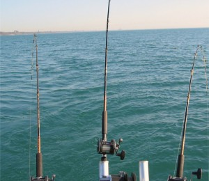 fishing poles copy