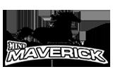 Security Maverick