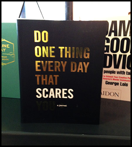 Do One Thing Every Day That Scares You - Robie Rogge &  Dian Smith